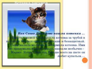 Как Саша Данилова нашла котенка … Вместе с мамой Саша нашла котенка за трубо