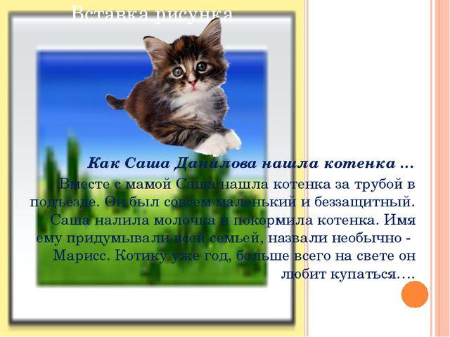 Как Саша Данилова нашла котенка … Вместе с мамой Саша нашла котенка за трубо...