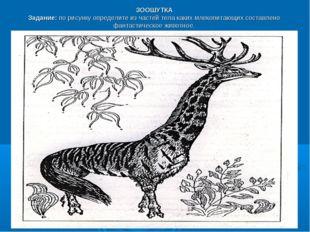 ЗООШУТКА Задание:по рисунку определите из частей тела каких млекопитающих со
