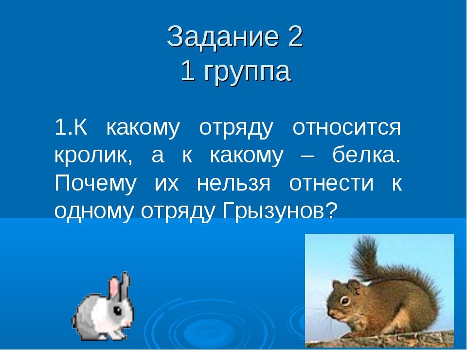 Задание 2 1 группа 1.К какому отряду относится кролик, а к какому – белка. По...