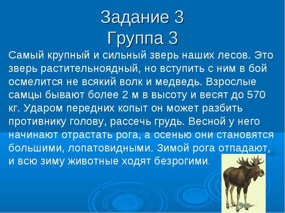 Задание 3 Группа 3 Самый крупный и сильный зверь наших лесов. Это зверь расти...