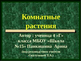 Комнатные растения Автор : ученица 4 «Г» класса МБОУ «Школа №15» Панкишина Ар