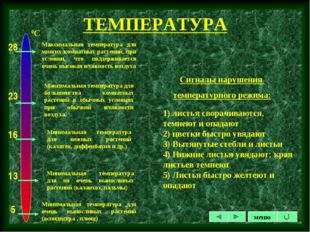 ТЕМПЕРАТУРА Сигналы нарушения температурного режима: 1) листья сворачиваются,
