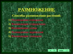 РАЗМНОЖЕНИЕ Способы размножения растений: 1) Размножение отводками 2) Размнож