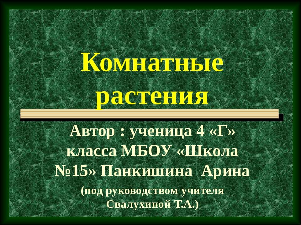 Комнатные растения Автор : ученица 4 «Г» класса МБОУ «Школа №15» Панкишина Ар...