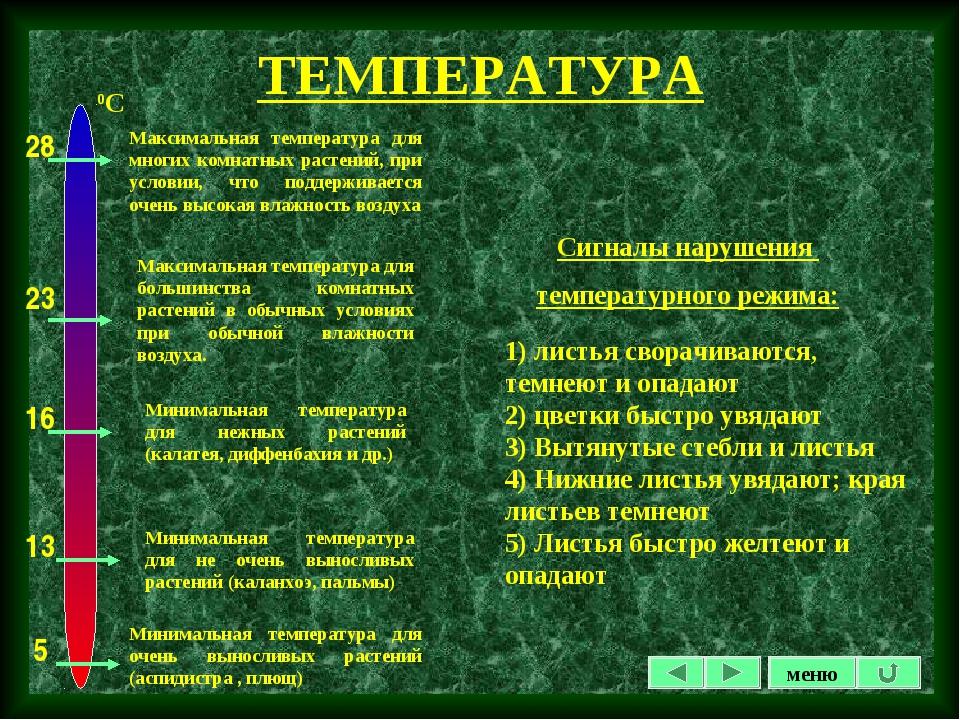 ТЕМПЕРАТУРА Сигналы нарушения температурного режима: 1) листья сворачиваются,...