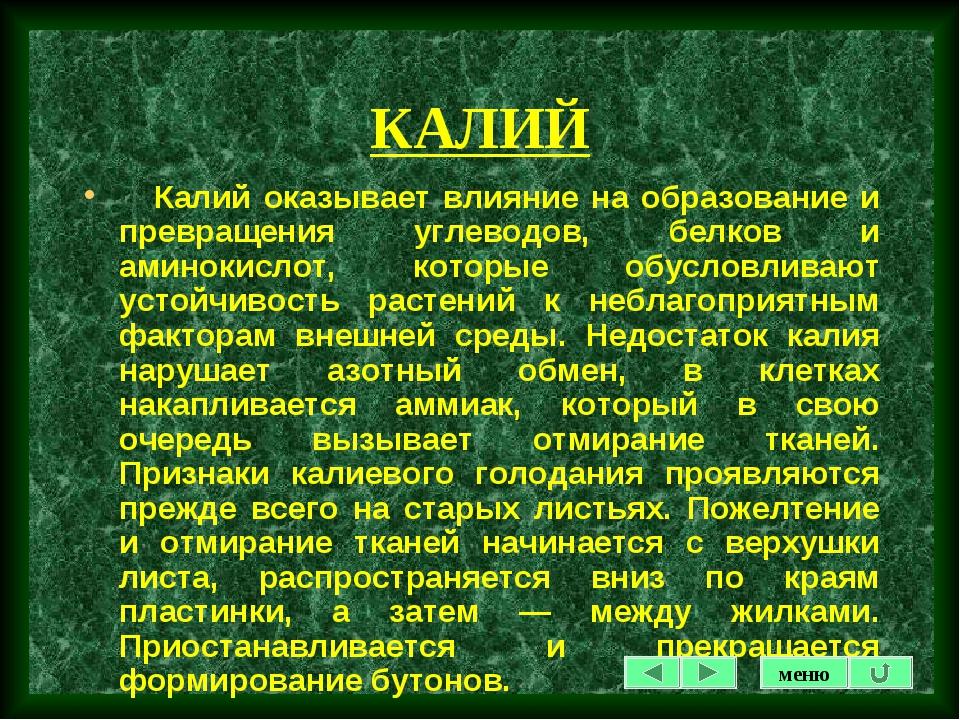 КАЛИЙ Калий оказывает влияние на образование и превращения углеводов, белков...