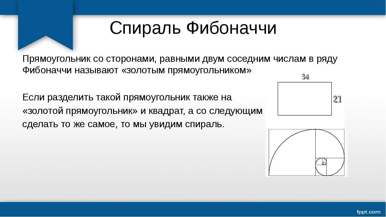 Спираль Фибоначчи Прямоугольник со сторонами, равными двум соседним числам в...