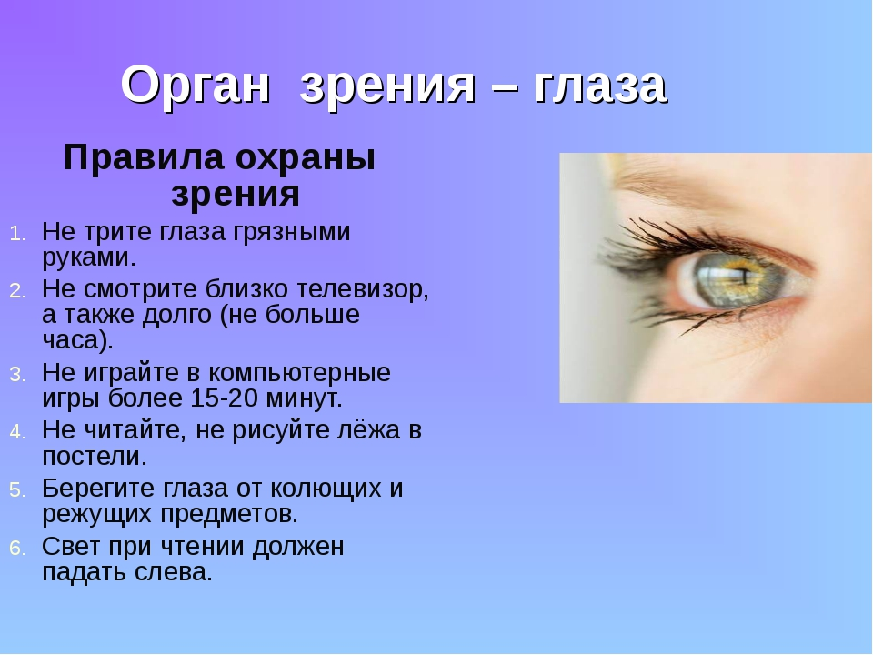 Орган зрения – глаза Правила охраны зрения Не трите глаза грязными руками. Не...