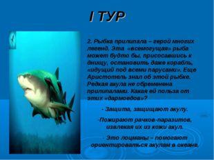 I ТУР 2. Рыбка прилипала – герой многих легенд. Эта «всемогущая» рыба может б