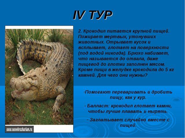 IV ТУР 2. Крокодил питается крупной пищей. Пожирает мертвых, утонувших животн...