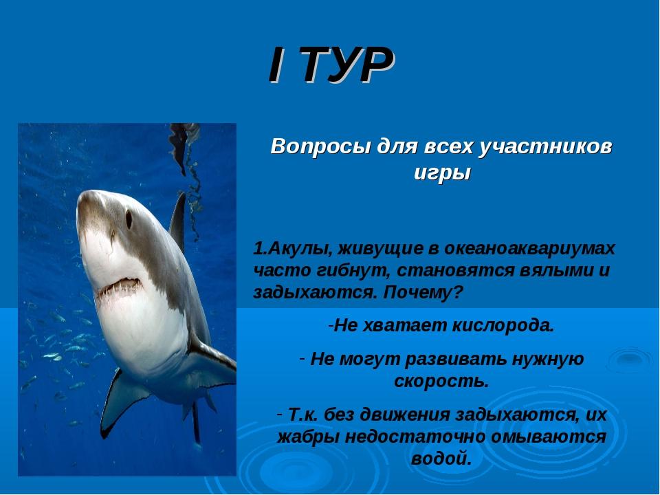 I ТУР Вопросы для всех участников игры 1.Акулы, живущие в океаноаквариумах ча...