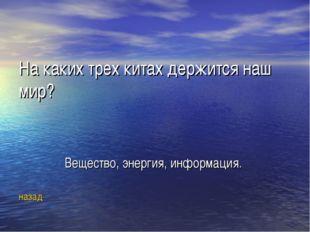 На каких трех китах держится наш мир? Вещество, энергия, информация. назад