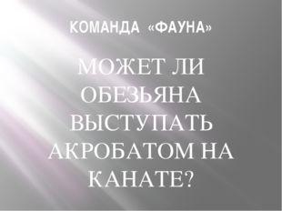 КОМАНДА «ФАУНА» МОЖЕТ ЛИ ОБЕЗЬЯНА ВЫСТУПАТЬ АКРОБАТОМ НА КАНАТЕ?