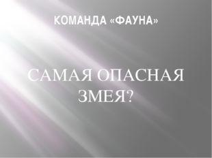 КОМАНДА «ФАУНА» САМАЯ ОПАСНАЯ ЗМЕЯ?