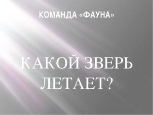 КОМАНДА «ФАУНА» КАКОЙ ЗВЕРЬ ЛЕТАЕТ?