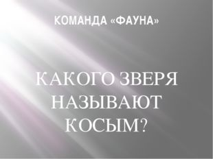 КОМАНДА «ФАУНА» КАКОГО ЗВЕРЯ НАЗЫВАЮТ КОСЫМ?
