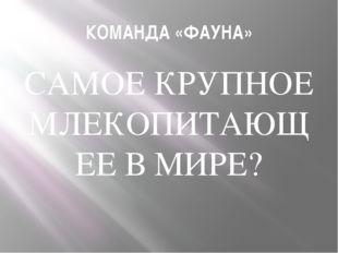 КОМАНДА «ФАУНА» САМОЕ КРУПНОЕ МЛЕКОПИТАЮЩЕЕ В МИРЕ?