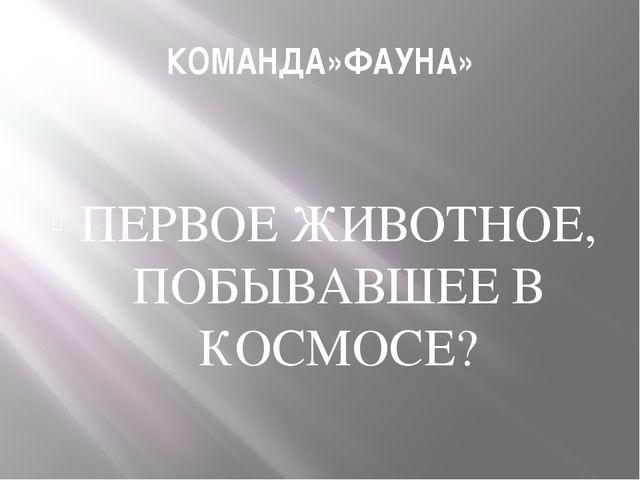 КОМАНДА»ФАУНА» ПЕРВОЕ ЖИВОТНОЕ, ПОБЫВАВШЕЕ В КОСМОСЕ?