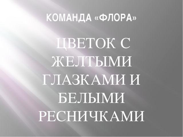 КОМАНДА «ФЛОРА» ЦВЕТОК С ЖЕЛТЫМИ ГЛАЗКАМИ И БЕЛЫМИ РЕСНИЧКАМИ