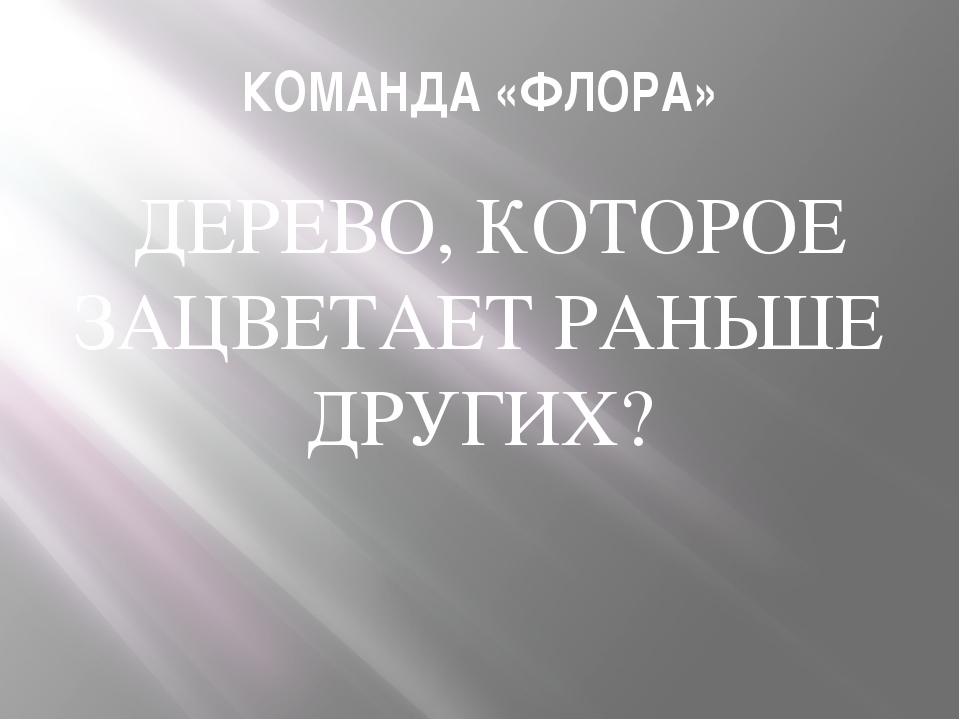 КОМАНДА «ФЛОРА» ДЕРЕВО, КОТОРОЕ ЗАЦВЕТАЕТ РАНЬШЕ ДРУГИХ?