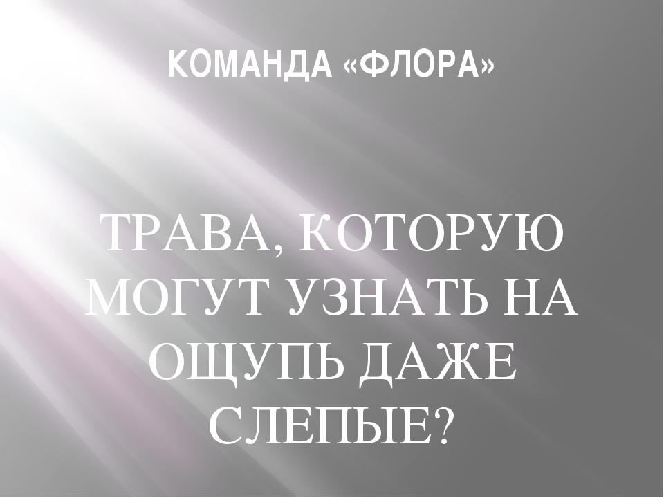 КОМАНДА «ФЛОРА» ТРАВА, КОТОРУЮ МОГУТ УЗНАТЬ НА ОЩУПЬ ДАЖЕ СЛЕПЫЕ?