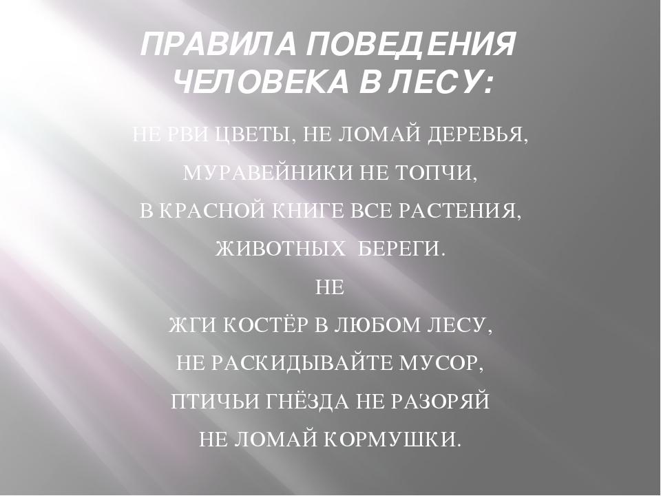 ПРАВИЛА ПОВЕДЕНИЯ ЧЕЛОВЕКА В ЛЕСУ: НЕ РВИ ЦВЕТЫ, НЕ ЛОМАЙ ДЕРЕВЬЯ, МУРАВЕЙНИК...