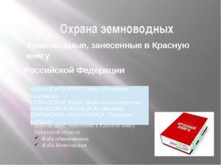 Охрана земноводных Земноводные, занесенные в Красную книгу Российской Федерац