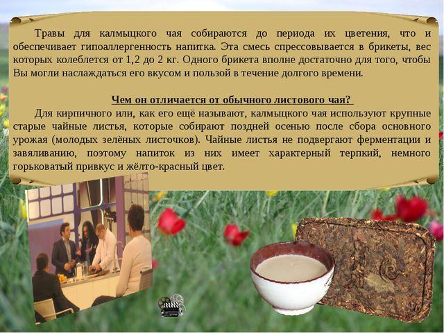 Травы для калмыцкого чая собираются до периода их цветения, что и обеспечивае...