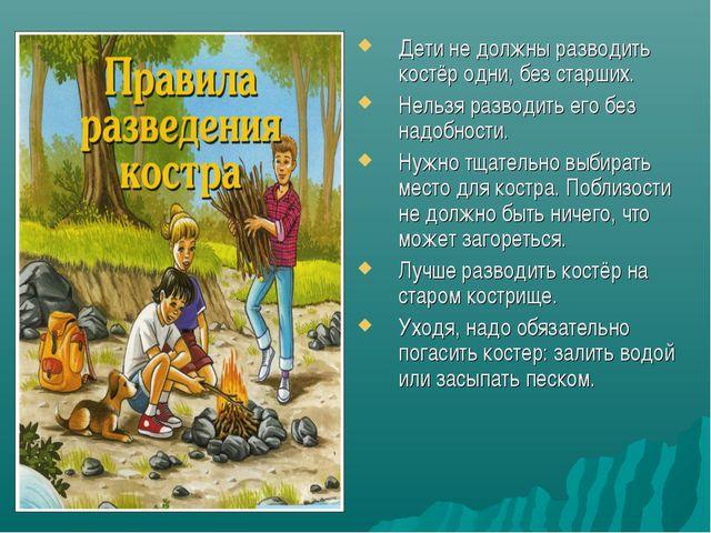 Дети не должны разводить костёр одни, без старших. Нельзя разводить его без н...