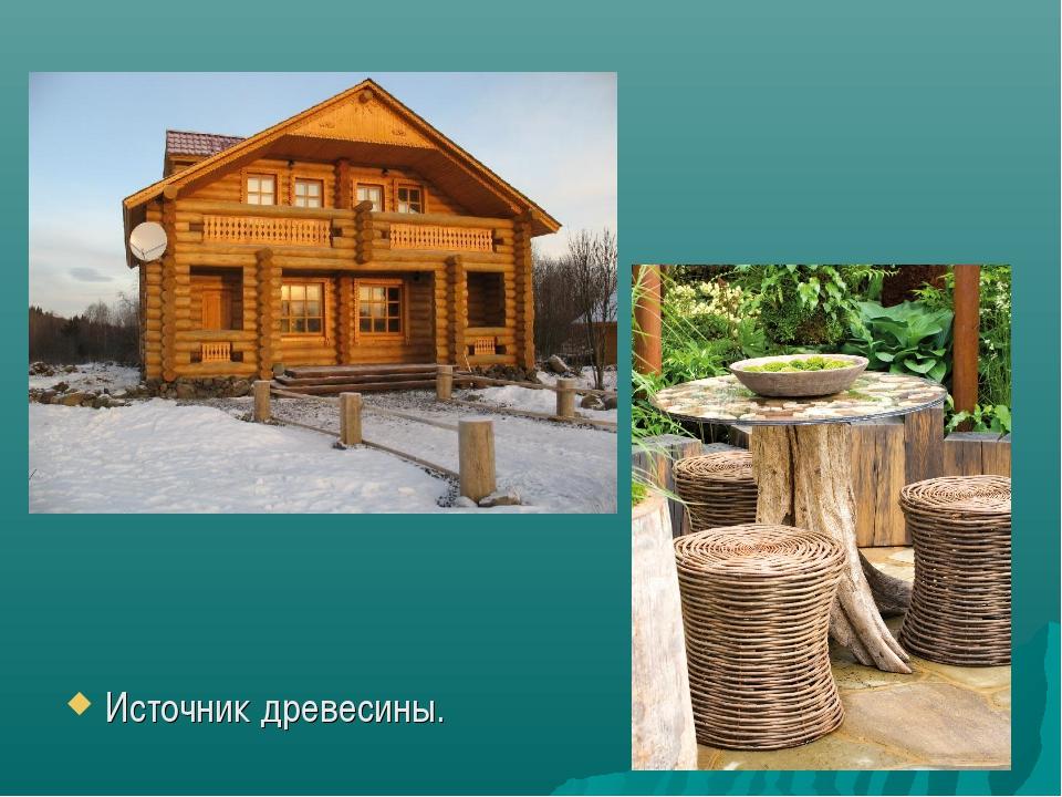 Источник древесины.
