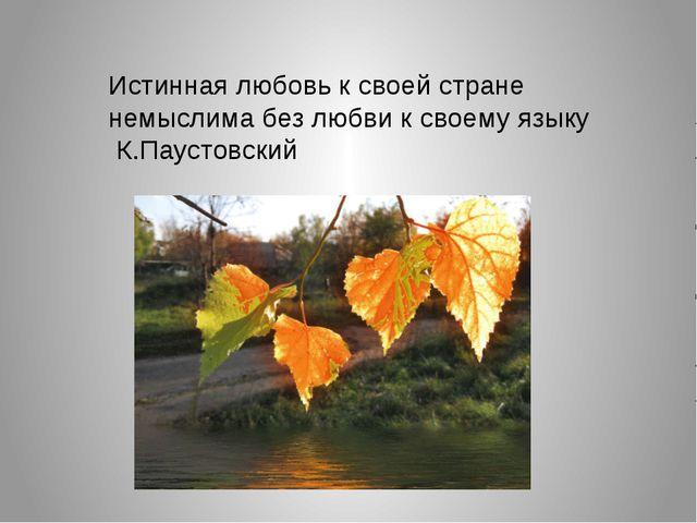 Истинная любовь к своей стране немыслима без любви к своему языку К.Паустовский
