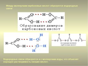 Между молекулами карбоновых кислот образуются водородные связи Водородные свя