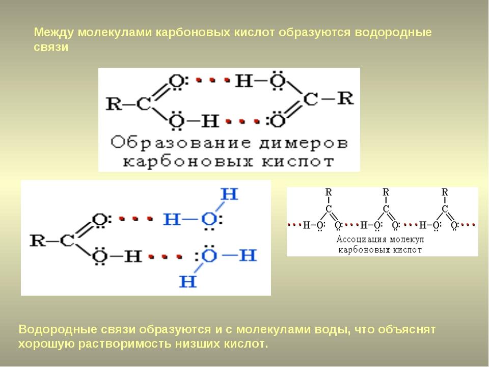 Между молекулами карбоновых кислот образуются водородные связи Водородные свя...