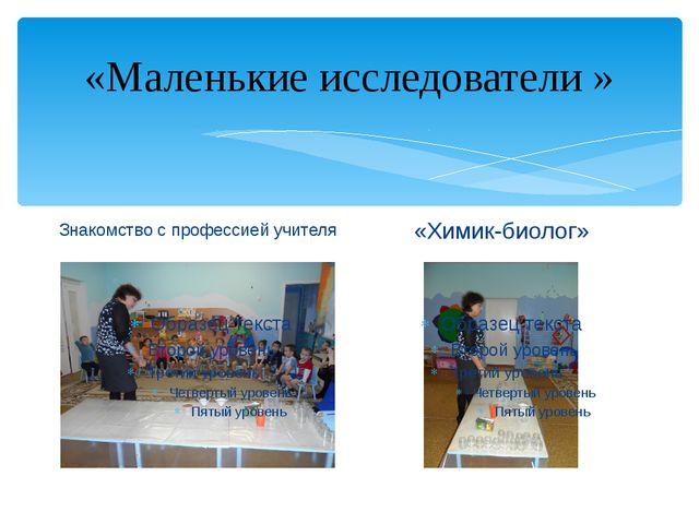 «Маленькие исследователи » Знакомство с профессией учителя «Химик-биолог»