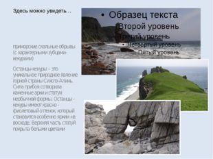 приморские скальные обрывы (с характерными зубцами-кекурами) Останцы-кекуры –