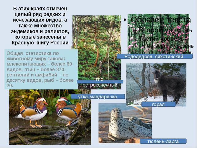 Вэтих краях отмечен целый ряд редких и исчезающих видов, а также множество э...