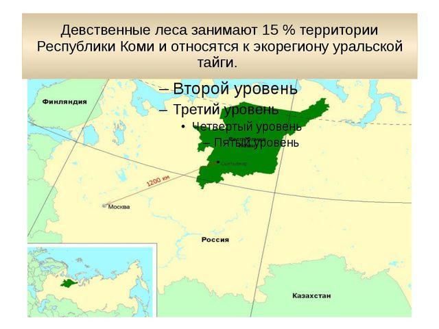Девственные леса занимают 15 % территории Республики Коми и относятся к экоре...