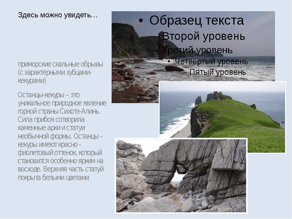 приморские скальные обрывы (с характерными зубцами-кекурами) Останцы-кекуры –...
