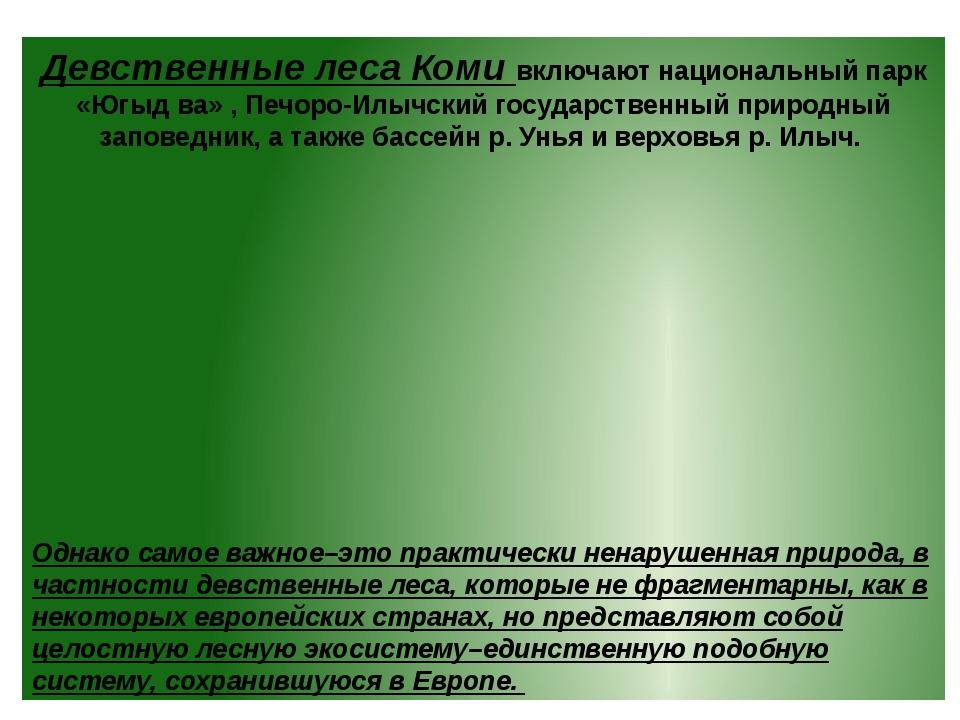Девственные леса Коми включают национальный парк «Югыд ва» , Печоро-Илычский...