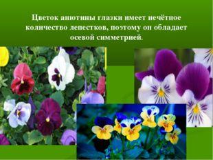 Цветок анютины глазки имеет нечётное количество лепестков, поэтому он обладае