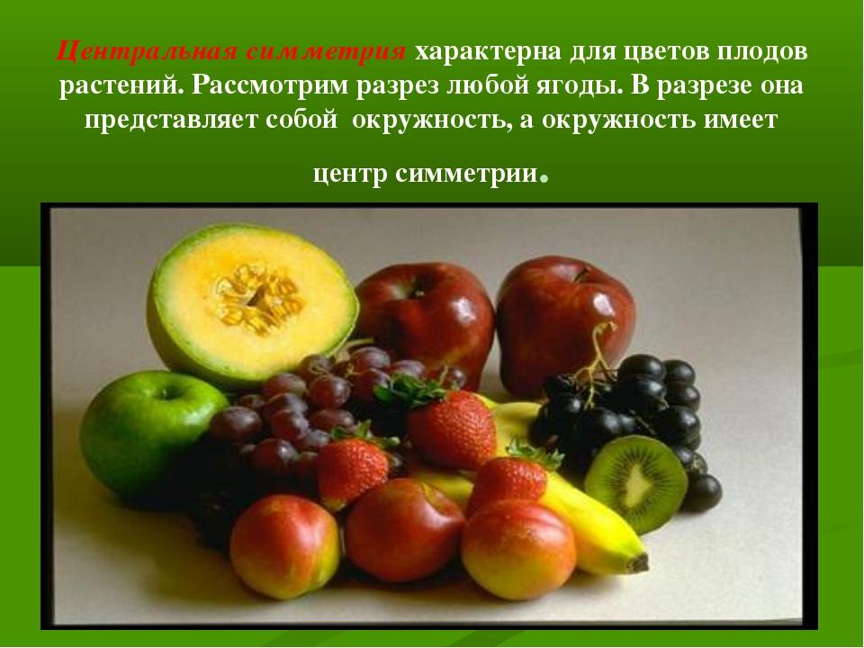 Центральная симметрия характерна для цветов плодов растений. Рассмотрим разре...