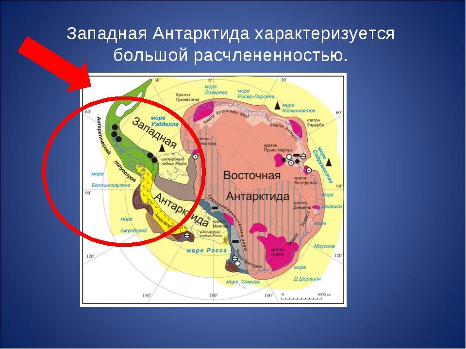 Западная Антарктида характеризуется большой расчлененностью.