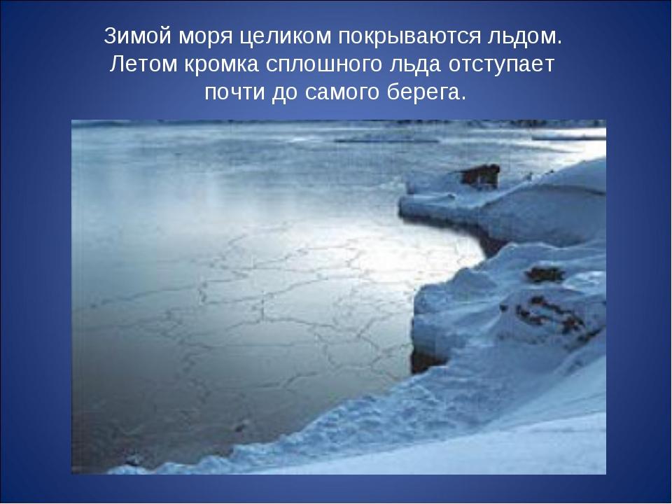 Зимой моря целиком покрываются льдом. Летом кромка сплошного льда отступает п...