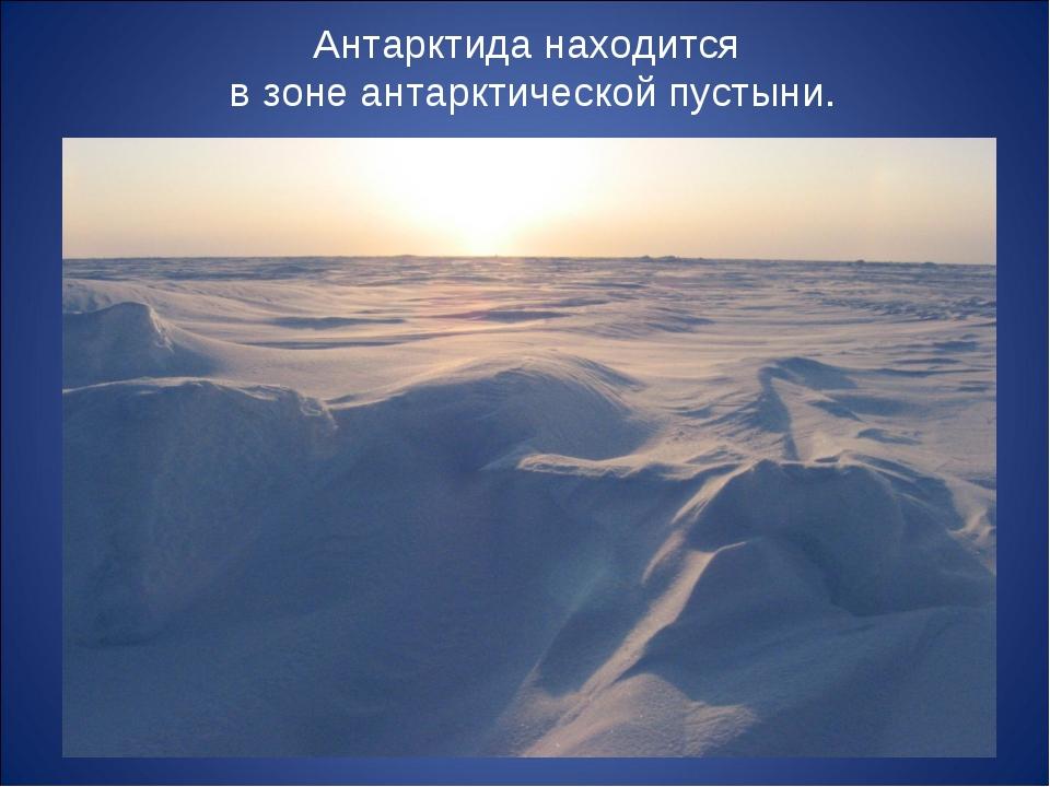 Антарктида находится в зоне антарктической пустыни.