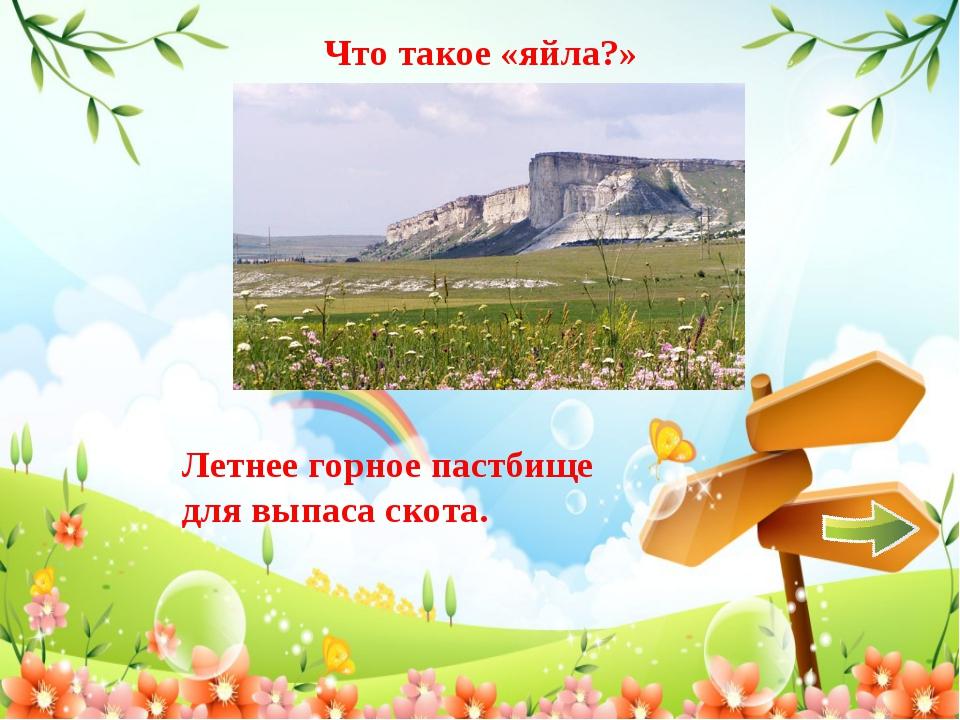 Что такое «яйла?» Летнее горное пастбище для выпасаскота.