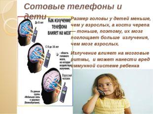 Размер головы у детей меньше, чем у взрослых, а кости черепа — тоньше, поэтом