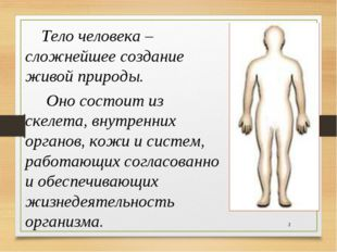 *  Тело человека – сложнейшее создание живой природы. Оно состоит из скеле