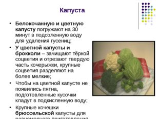 Капуста Белокочанную и цветную капусту погружают на 30 минут в подсоленную во