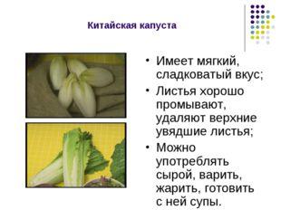 Китайская капуста Имеет мягкий, сладковатый вкус; Листья хорошо промывают, уд